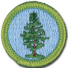 Forestry Badge Image