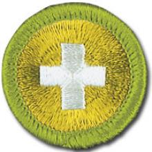 Safety Badge Image