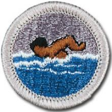 Swimming Badge Image